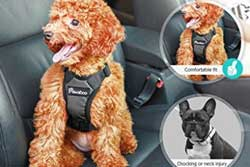 dog safety vest harness